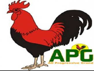 Learning from 2015 mistakes will help take over Imo—APGA