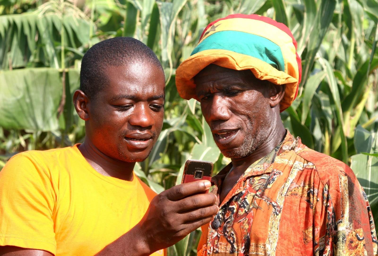 Alosfarm is modernizing and transforming agricultural supply chain in Nigeria
