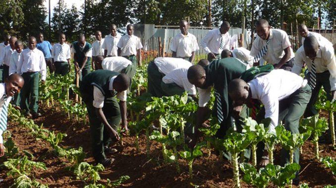 Agric School
